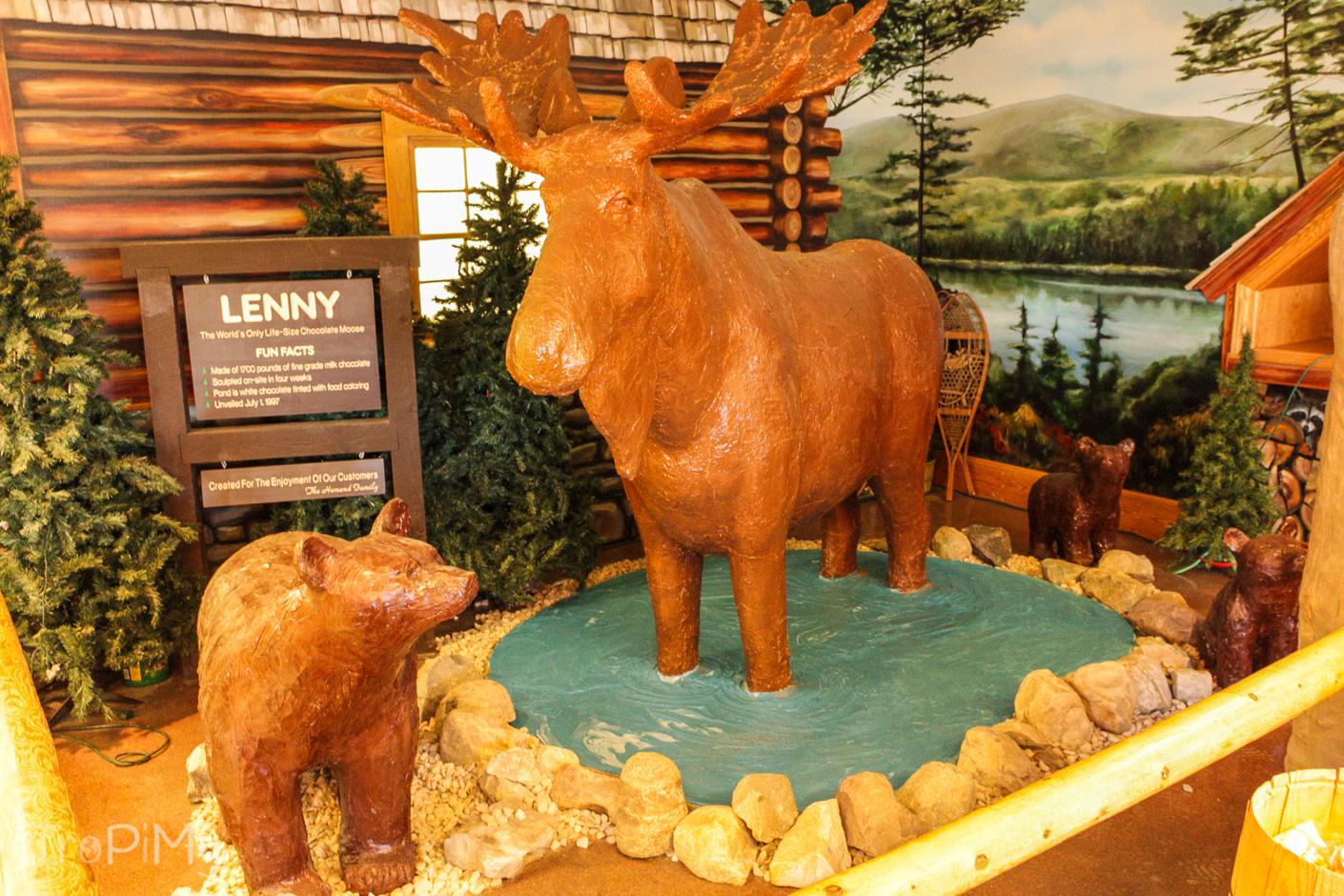 Lenny - czekoladowy łoś