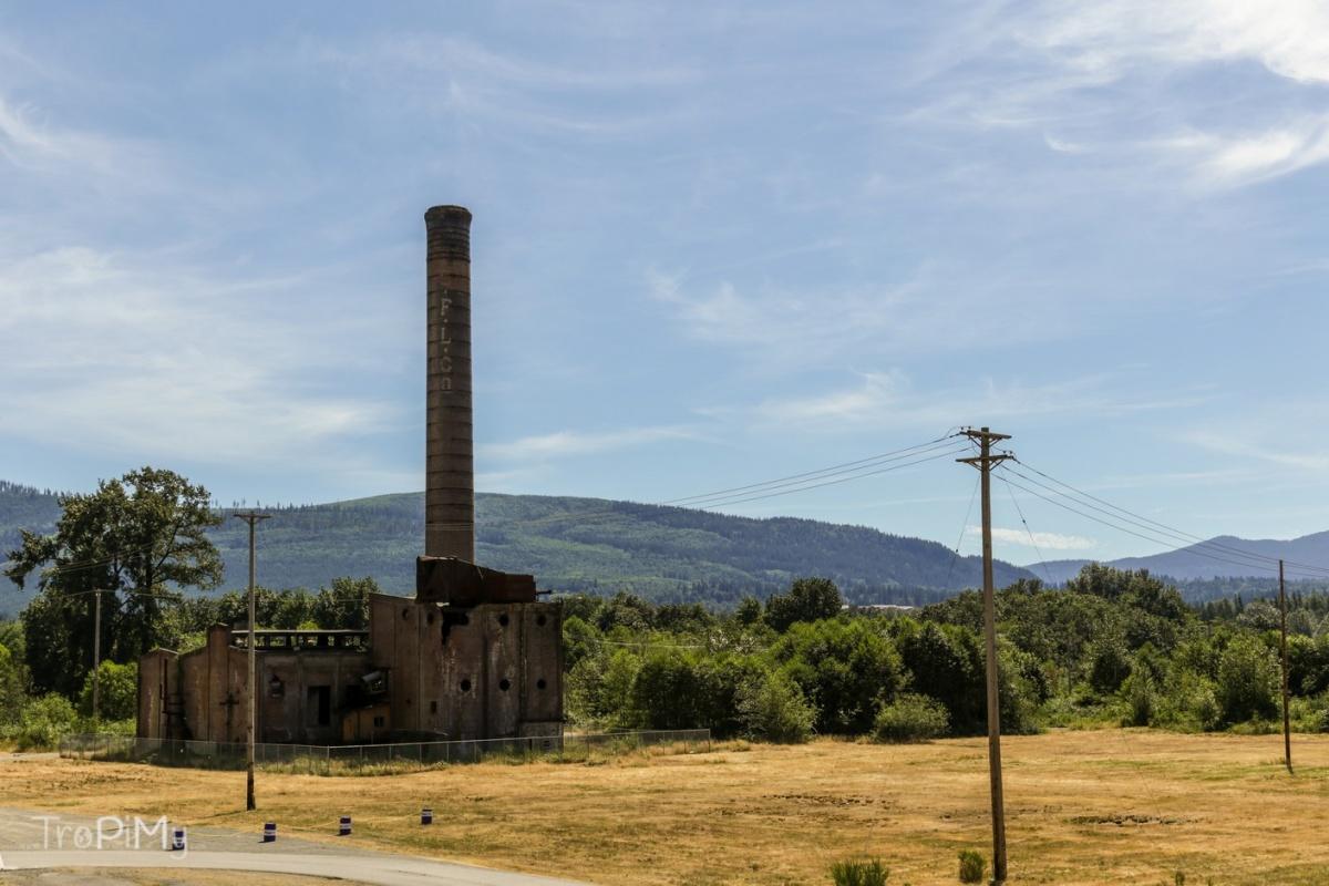 Twin Peaks - tartak Packardów