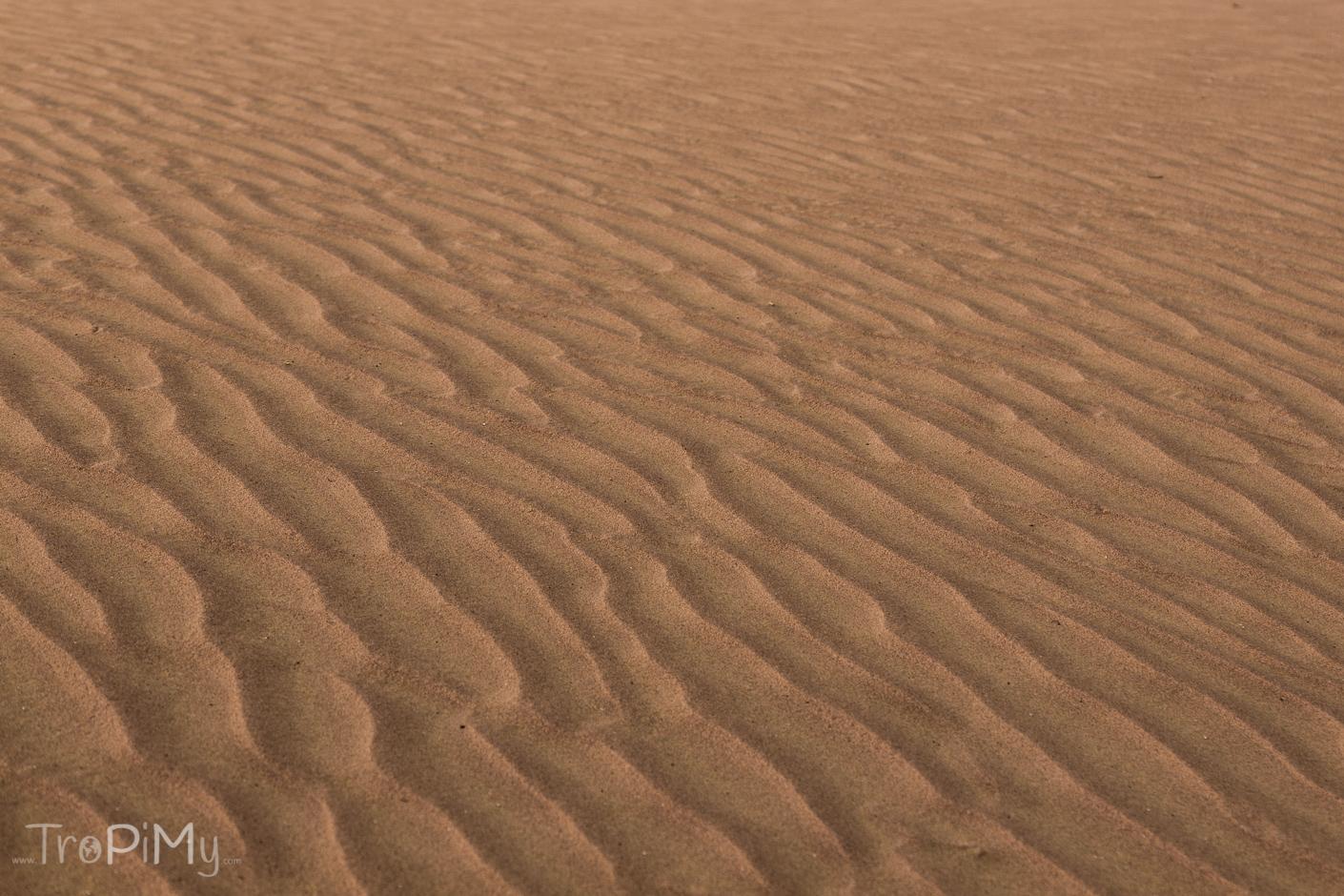Pustynia w Emiratach